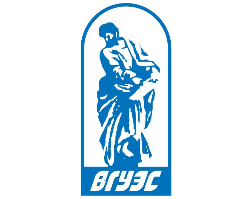 Владивостокский государственный университет экономики и сервиса, ВГУЭС